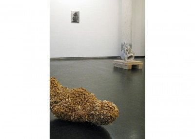 <strong>Ritual Footpath</strong> 2009<br>Installation view, Galerie Diana Stigter, Amsterdam
